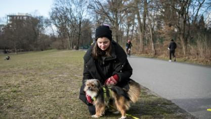 De la compagnie pour la pandémie : ruée des Allemands sur les animaux domestiques