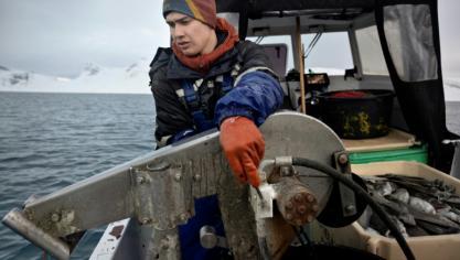 Le Groenland aux urnes avec son avenir minier au coeur du débat