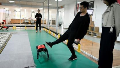 Un robochien chinois qui court plus vite que son ombre