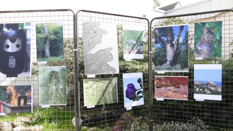 L'exposition est visible à plusieurs endroits du quartier Voisinlieu.