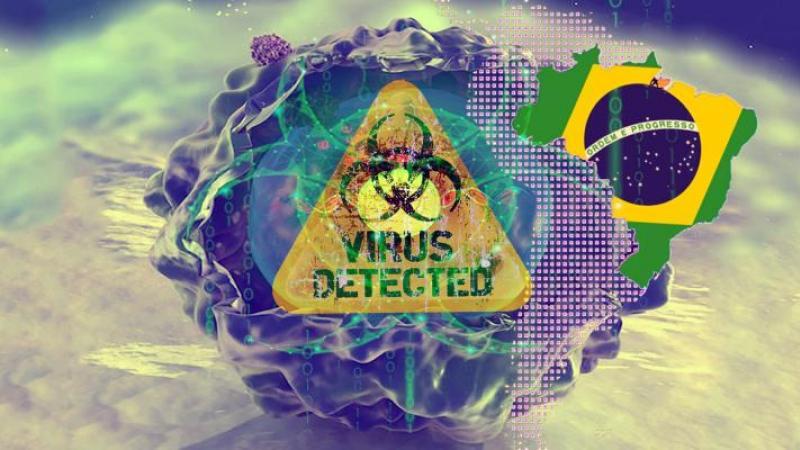virus-bresil