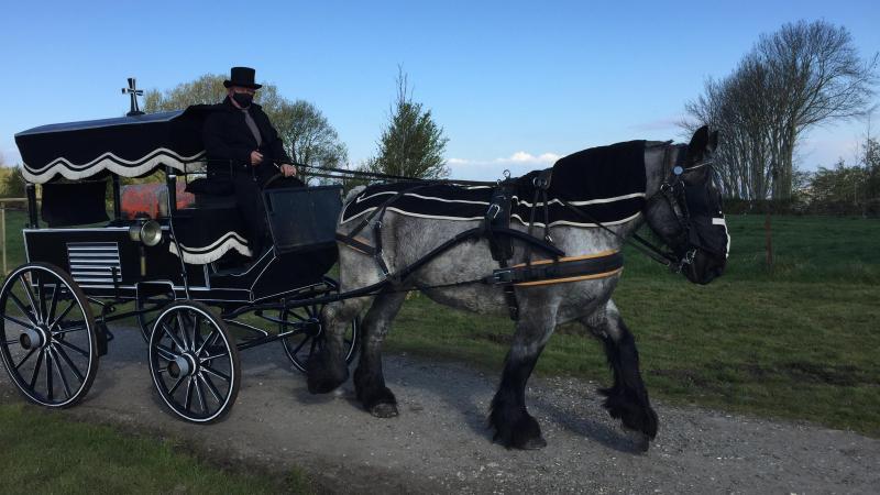 Martial Huguet, qui propose déjà des balades en calèche à Saint-Valery-sur-Somme, va participer à des enterrements avec sa jument Tessa.