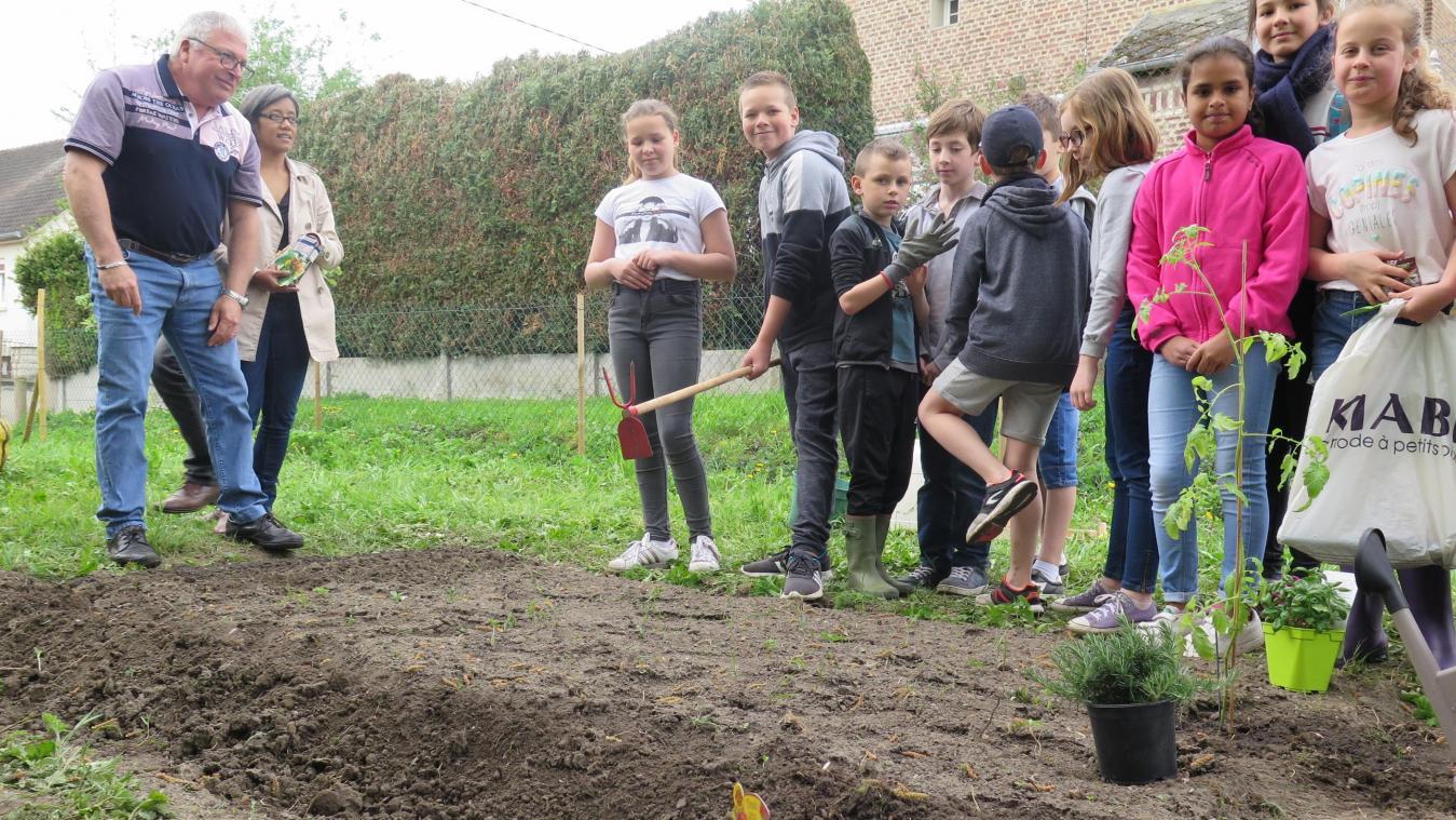 Entretenir Un Pied De Basilic un premier jardin pédagogique voit le jour à charmes