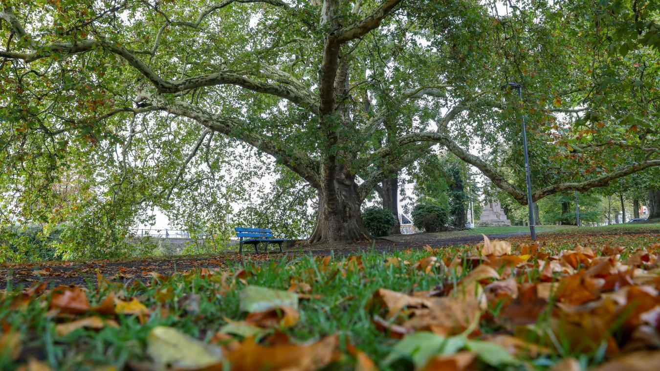 Pourquoi cette année l'automne commence le 23 septembre