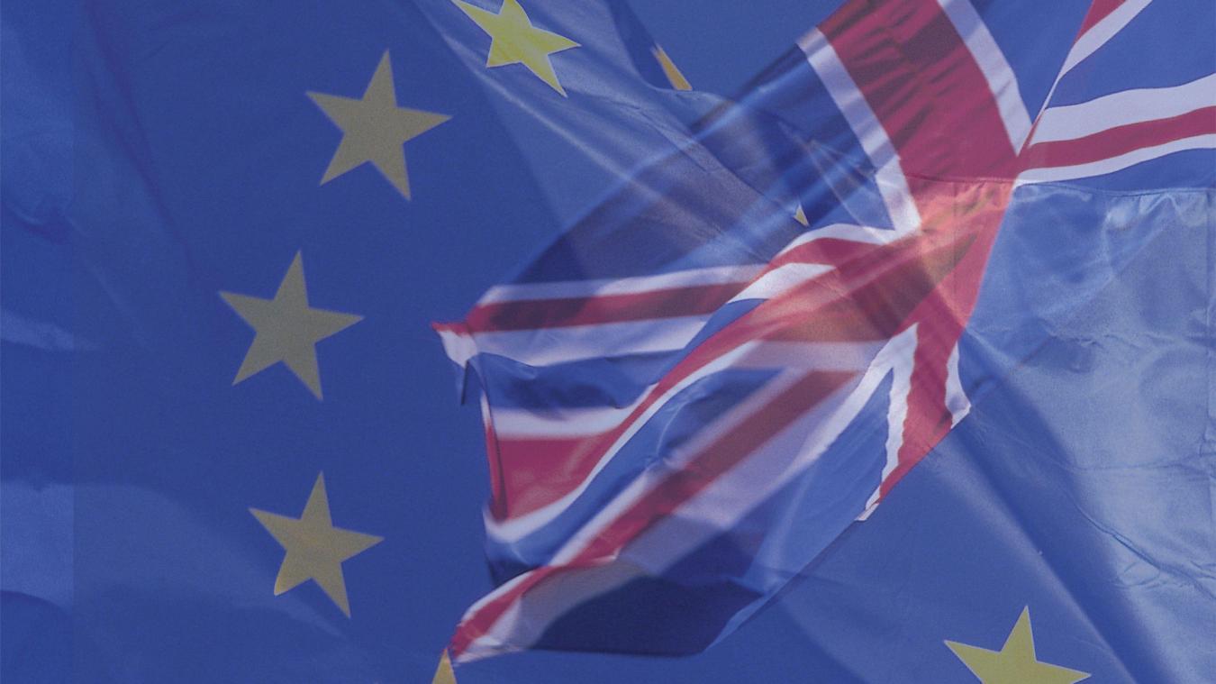 Le gouvernement dévoilera les objectifs des négociations commerciales après le Brexit