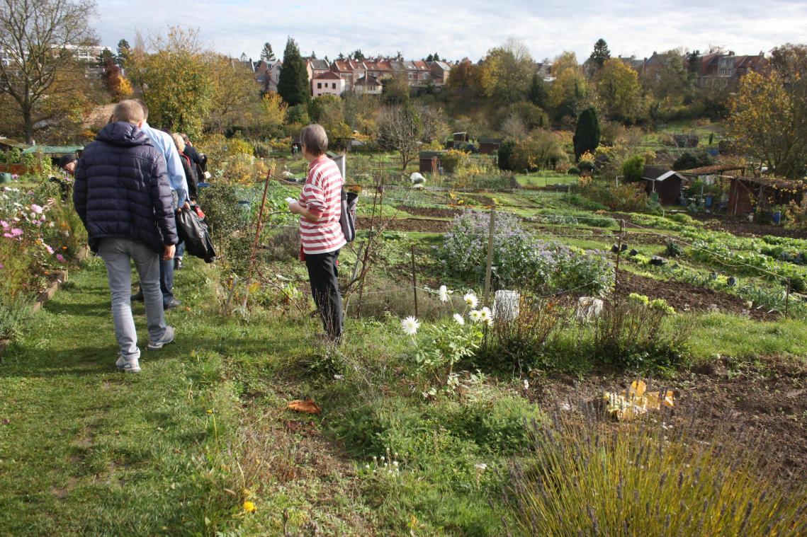 Photo Jardin Zen Chez Particulier non, les jardins familiaux d'amiens ne sont pas des lieux de