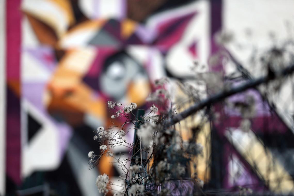La fresque du cerf par Kat&Action rue de Mulhouse.