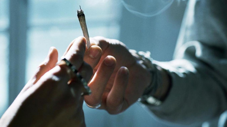 80,8% des répondants sont pour une légalisation de la consommation et de la production de cannabis.