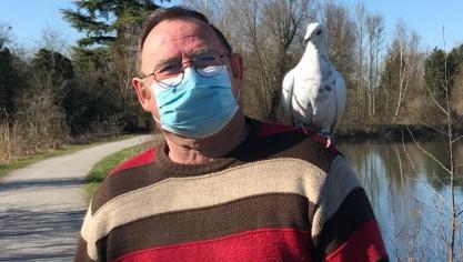 Perrin, le pigeon, accompagne Guilain Outrebon au quotidien.