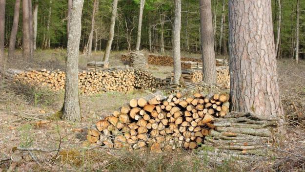 Le bois fait partie des achats de première nécessité (Photo d'archives).