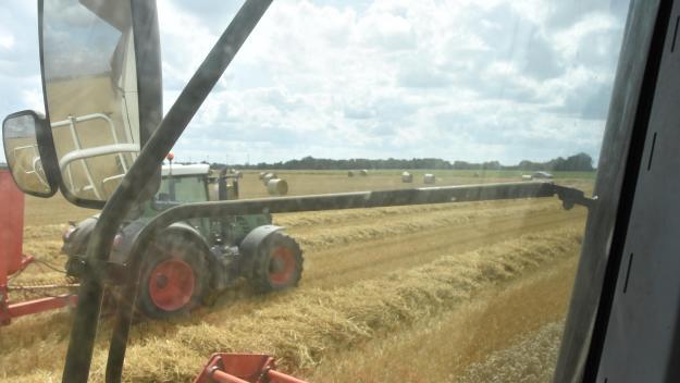 La Somme est une grande terre agricole, avec notamment 238164 hectares de céréales en 2019.